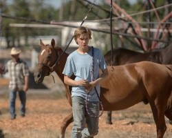 Monday 17th December - Monday Night Cinema: Lean on Pete 15